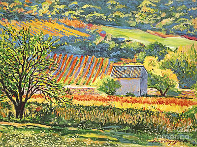 Vineyards Of Provence Print by David Lloyd Glover