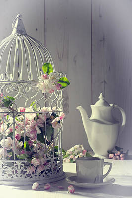 Bird Cages Photograph - Vintage Afternoon Tea by Amanda Elwell