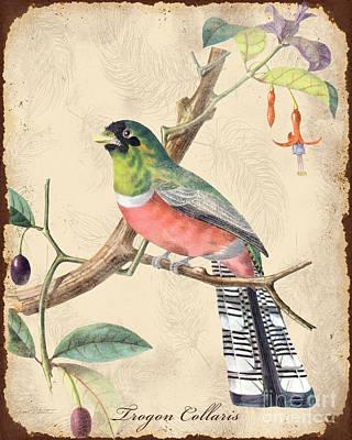 Vintage Bird Study-a Original by Jean Plout
