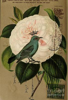 Vintage French Botanical Art Pink Rose Teal Bird Print by Cranberry Sky