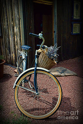 Vintage Schwinn And The Barn Door Print by Paul Ward