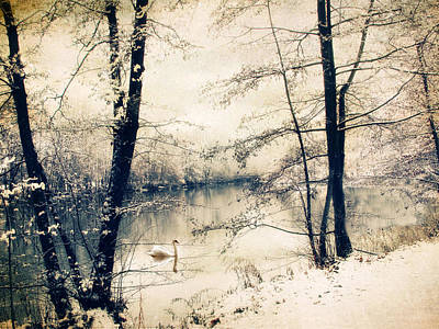 December Photograph - Vintage Winter  by Jessica Jenney