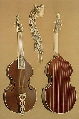 Viola Da Gamba, Or Bass Viol Print by Alfred James Hipkins