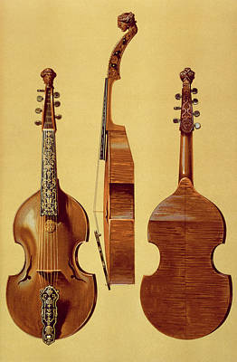 Violin Drawing - Viola Damore, 18th Century by Alfred James Hipkins