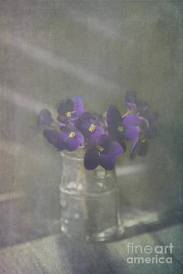 Water Jars Photograph - Violets by Elena Nosyreva