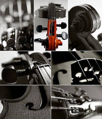Curves Mixed Media - Violin Collage by Aleksey Tugolukov