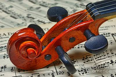 Violin Scroll Up Close Print by Paul Ward