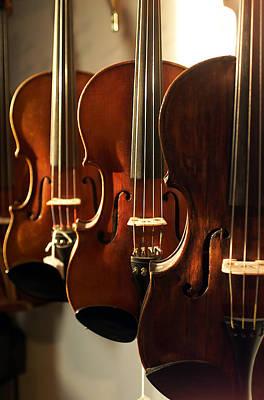 Violin Bows Violin Bows Photograph - Violins Vertical by Jon Neidert
