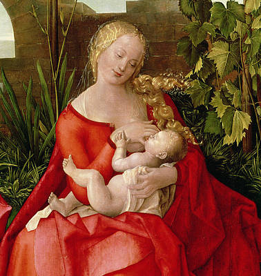 Fed Painting - Virgin And Child Madonna With The Iris, 1508 by Albrecht Durer or Duerer