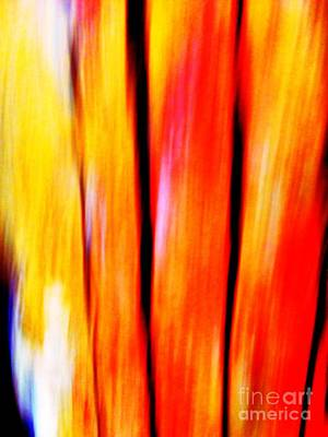 Abstraction Photograph - Vision by Cristina Stefan