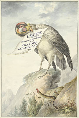 Vulture Drawing - Vulture In Its Beak A Sheet Of Paper, Circle Of François by Quint Lox