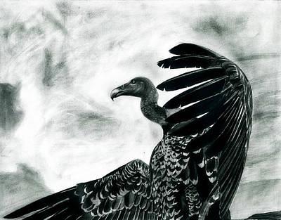 Vulture Mixed Media - Vulture's Pride by Raghav Ram