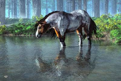 Pinto Digital Art - Wading Horse by Daniel Eskridge