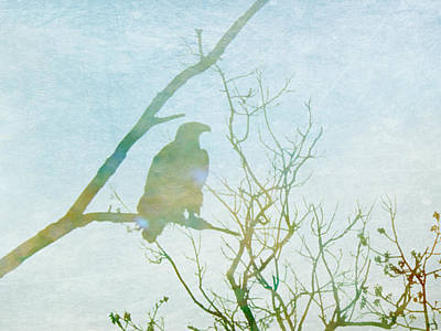Vulture Digital Art - Waiting Eagle by Georgia Fowler