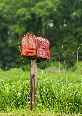 Mail Box Photograph - Waiting On A Letter by Earl Ball