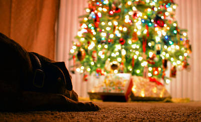 Waiting On Christmas Print by David Lee Thompson