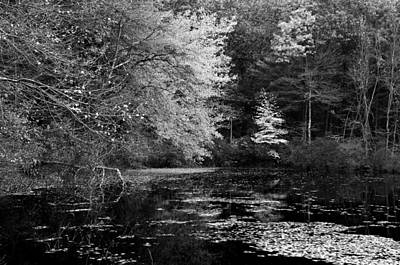 Walden Pond Photograph - Walden Pond by Christian Heeb