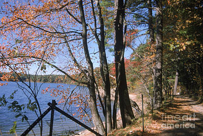 Walden Pond Photograph - Walden Pond by Eunice Harris