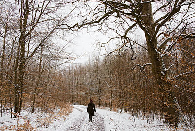 Walking In The Winterly Woodland Print by Matthias Hauser