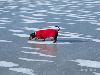 Walking On Water Print by Ann Horn