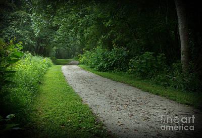 Walking Path Print by Douglas Stucky