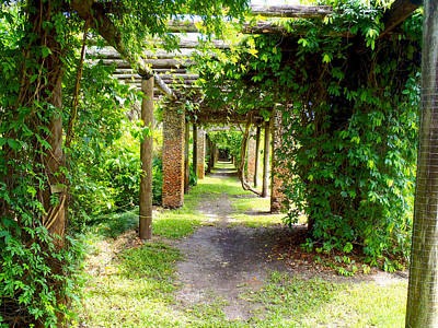 Key Biscayne Photograph - Walkway by Carey Chen