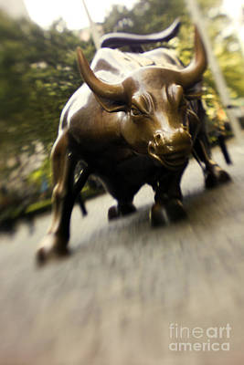 Wall Street Bull Print by Tony Cordoza