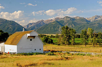 Pasture Scenes Photograph - Wallowa Mountains And White Barn by Nik Wheeler