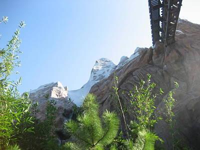 Disney Photograph - Walt Disney World Resort - Animal Kingdom - 12128 by DC Photographer