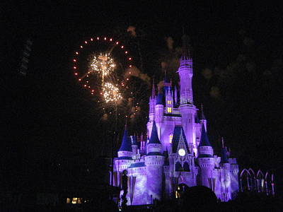 World Photograph - Walt Disney World Resort - Magic Kingdom - 121240 by DC Photographer