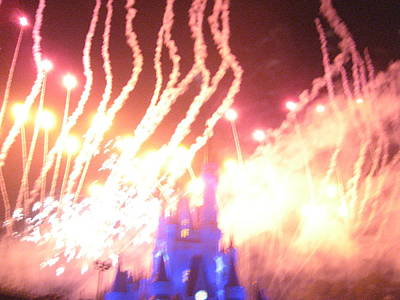 World Photograph - Walt Disney World Resort - Magic Kingdom - 121269 by DC Photographer