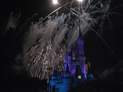 World Photograph - Walt Disney World Resort - Magic Kingdom - 121287 by DC Photographer