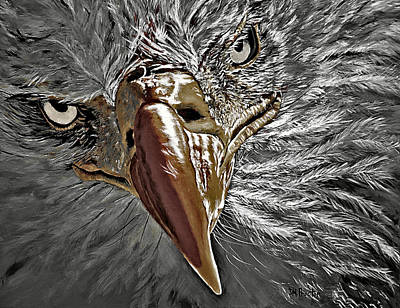 American Eagle Painting - War Eagle by Donna Proctor