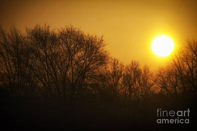 Warm Glow Of The Morning Sunrise Print by Thomas Woolworth