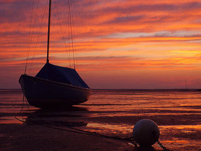 Gallery Website Photograph - Warmth Of July by Dianne Cowen