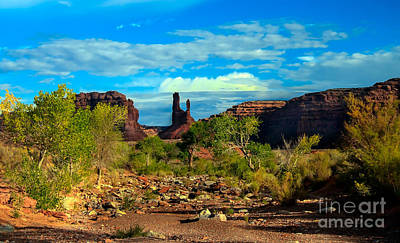 Wash Valley Of The Gods Print by Robert Bales