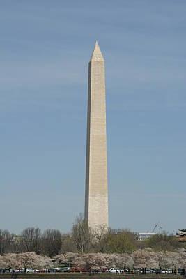 Washington Monument - Cherry Blossoms - Washington Dc - 011314 Print by DC Photographer