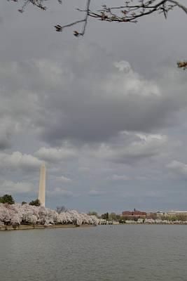 Outdoors Photograph - Washington Monument - Cherry Blossoms - Washington Dc - 011333 by DC Photographer