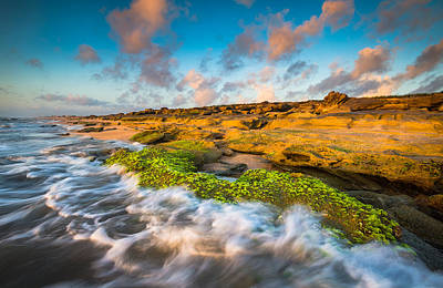 Landscape Photograph - Washington Oaks State Park Coquina Rocks Beach St. Augustine Fl Beaches by Dave Allen
