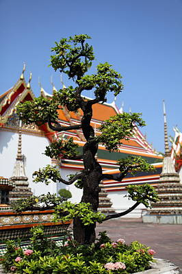 Wat Pho - Bangkok Thailand - 011323 Print by DC Photographer