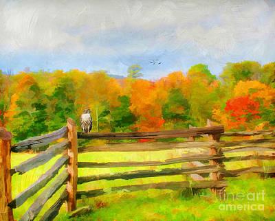 Split Rail Fence Photograph - Watching Autumn by Darren Fisher