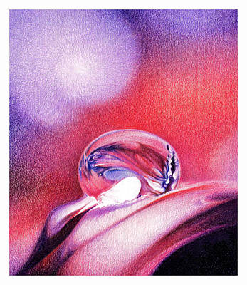 Pinks And Purple Petals Drawing - Water Drop by Natasha Denger