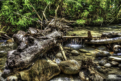 Water Filter Original by Mario Legaspi