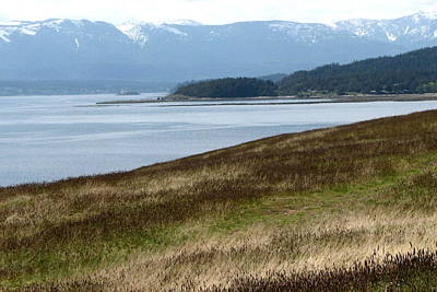 Hornby Island Photograph - Water Landscape by Annie  DeMilo