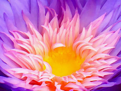 Lilies Digital Art - Water Lily Close-up by Amy Vangsgard