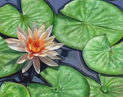 Flora Painting - Water Lily by David Stribbling