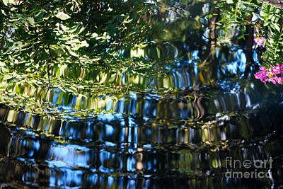 Botanic Photograph - Water Reflections 6 by Nancy Mueller