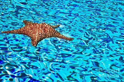 Water Ripples Original by Eleni Mac Synodinos