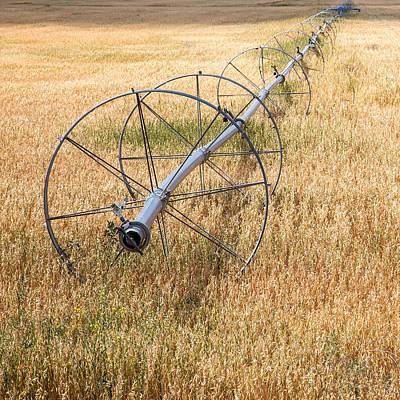 Irrigation Photograph - Water Wheel by Peter Tellone