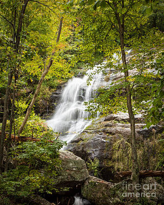 Trees Photograph - Waterfall Along The Blue Ridge Number 1 by Jim Swallow